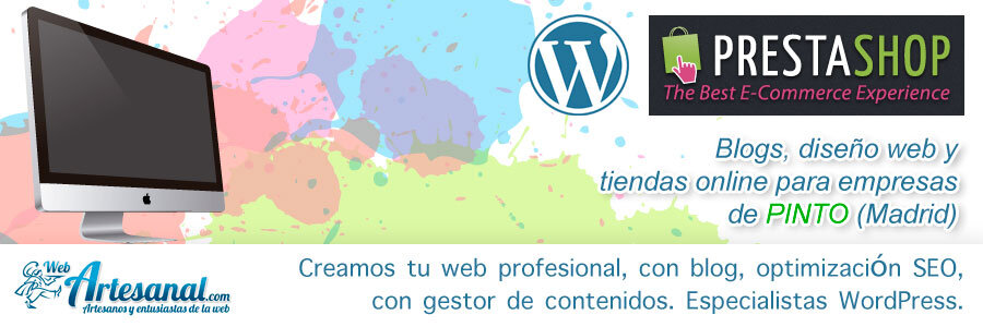 Mantenimiento web Pinto