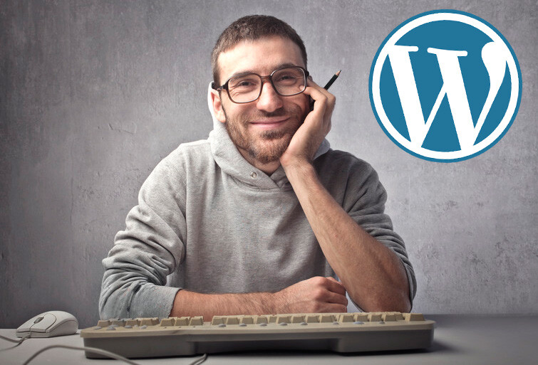 Desarrollador WordPress: Ventajas de contratar a un profesional WordPress