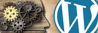Adaptar, modificar, retocar, personalizar temas WordPress. webartesanal.com