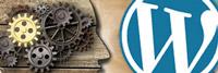 Actualizar WordPress ¿Apto para todos los públicos?