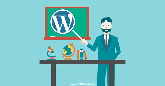 Clases particulares de WordPress en Madrid